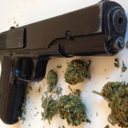 From the CEO: The 2nd Amendment and Cannabis